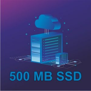 500 MB SSD Shared Web Hosting on CWP Panel - Most Economical Web Hosting Service in USA, Germany and Entire Europe With World Class Support